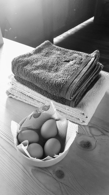 Fresh eggs from the farm!