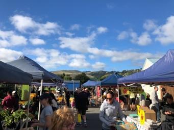 Opawa Farmers Market
